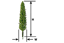 Plastruct 94026 Tree Poplar 3 1/2  4/ This is Plastruct 94026 Tree Poplar 3 1/2 4/. Plastrees conifer trees, poplar trees, 3-1/2. Quality, ready-made, conifer style trees for instant landscaping. Sturdy, yet realistic, at very reasonable prices. Varying shades of green randomly packaged in clear tubes for protection. Hand fabricated from nylon, wire and foam. Height includes the appropriate trunk length. 4 per package.Condition: Factory New (C-9All original; unused; factory rubs and evidence of handling, shipping and factory test run.Standards for all toy train related accessory items apply to the visual appearance of the item and do not consider the operating functionality of the equipment.Condition and Grading Standards are subjective, at best, and are intended to act as a guide. )Operational Status: FunctionalThis item is brand new from the factory.Original Box: Yes (P-9May have store stamps and price tags. Has inner liners.)Manufacturer: PlastructModel Number: 94026MSRP: $28.30Category 1: Scenery & MaterialsCategory 2: Trees & ShrubberyAvailability: Ships in 3 to 5 Business Days.The Trainz SKU for this item is P11518636. Track: 11518636 - FS - 001 - TrainzAuctionGroup00UNK - TDIDUNK