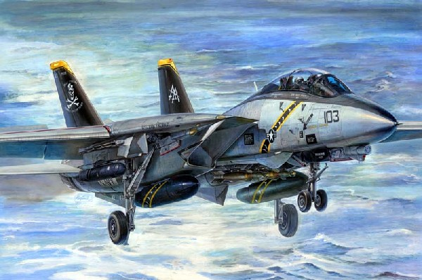 a comprehensive analysis and description of the aircraft f 14 tomcat in the united states military A comprehensive analysis and description of the aircraft f-14 tomcat in the united states military pages 5  f 14 tomcat, f 14 tomcat speed, cat, top gun.